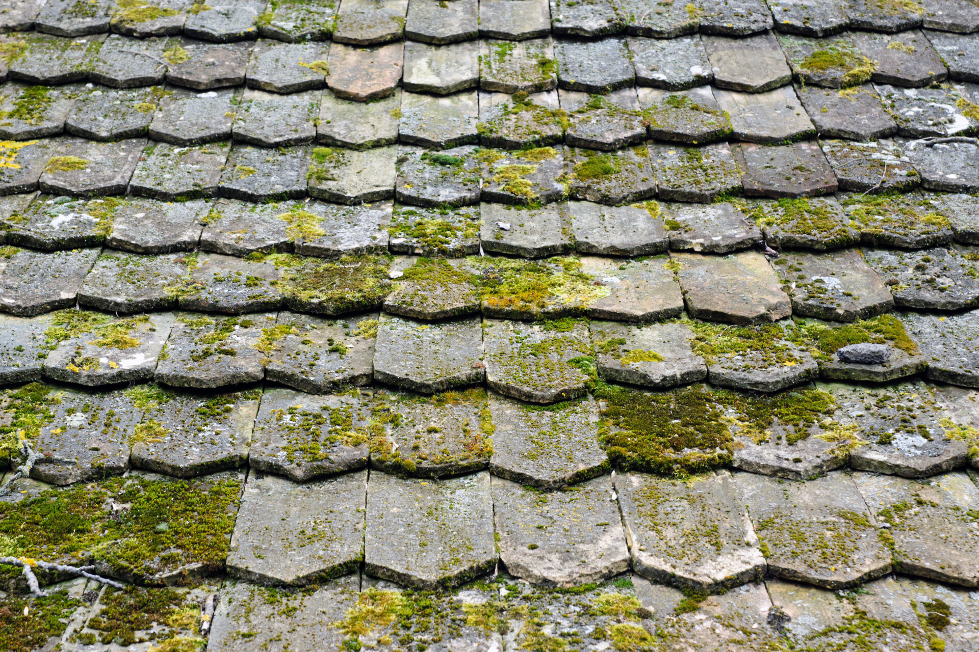 Common Roofing Problems roof contractor in Towson - Claddagh Construction